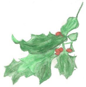 mistletoe-web
