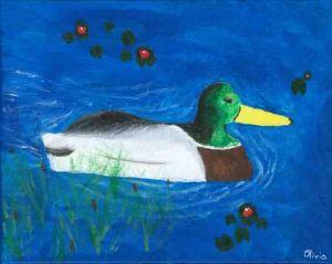 duck-web