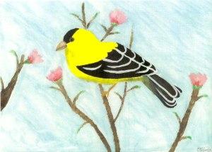 goldfinch-web