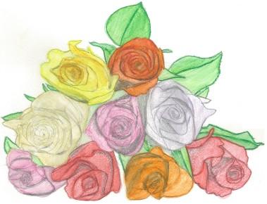 roses-004